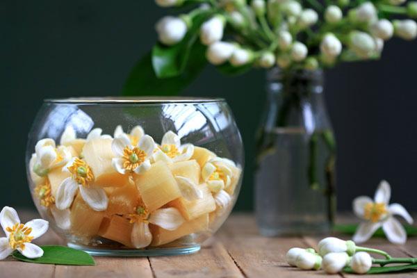 tac dung cua hoa buoi