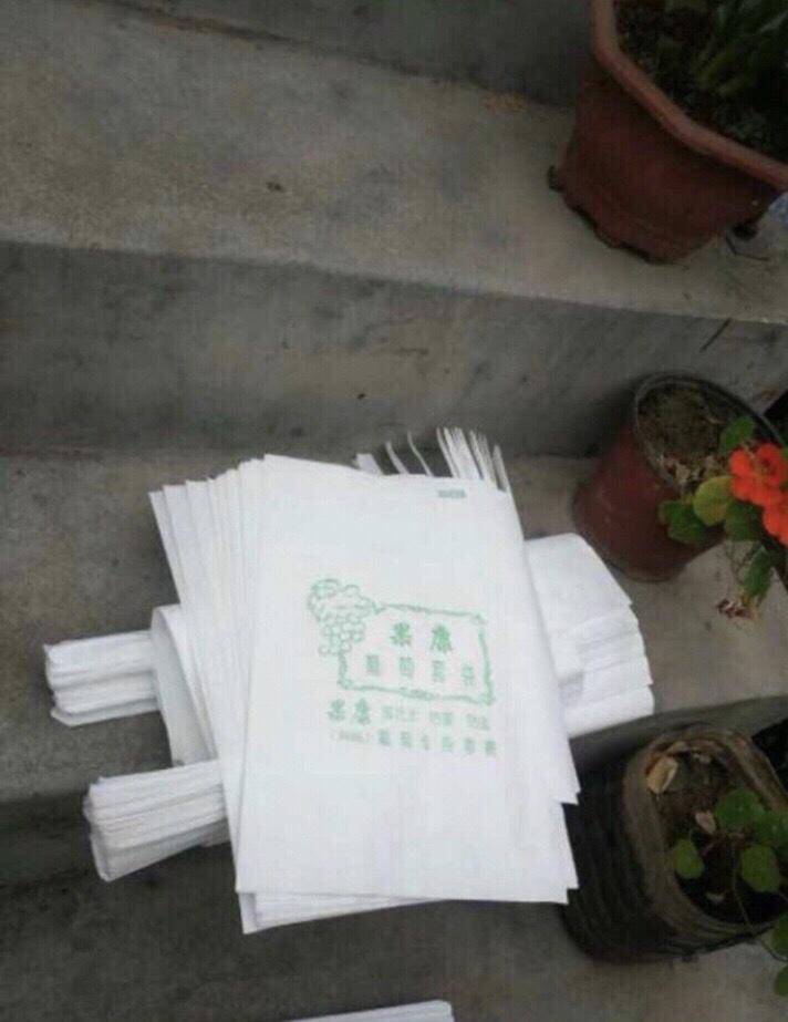 Túi bọc xoài thái, bơ, thanh long  Kích thước: 22x28 cm Chất liệu: vải không dệt PE chống ruồi vàng, chống rám nắng vô cùng hiệu quả Thời gian tái sử dụng: 2 - 3 năm Giá thành: 180.000 đồng/200 túi
