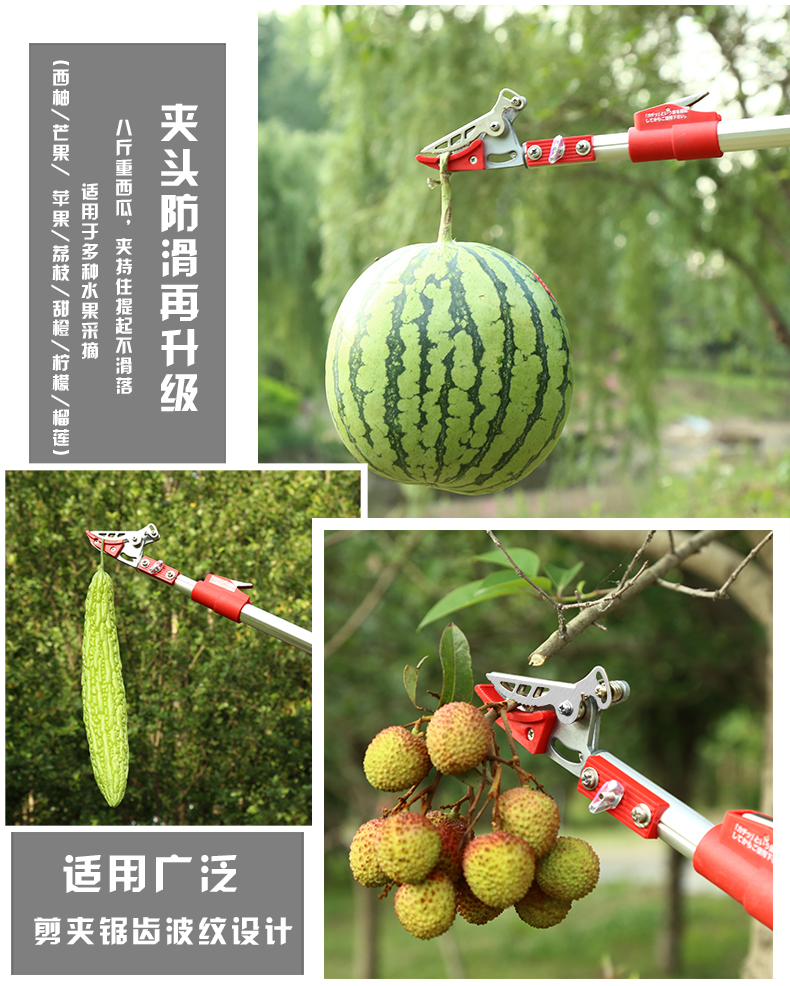 Hái được tất cả các loại trái cây trên cao mà không phải trèo leo