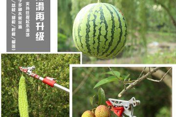 Dụng cụ hái quả – cắt tỉa cành cây trên cao